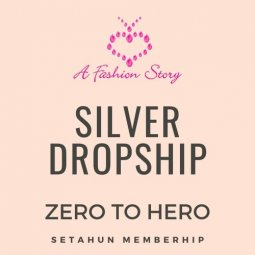 Silver Dropship - ZERO TO HERO AFSISTERS