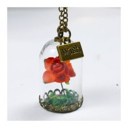 A-ZB800rose Beauty Rose In A Jar & Wish Plate Carved Necklace